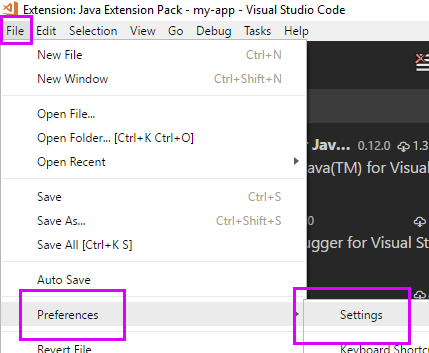 Visual Studio Code Settings
